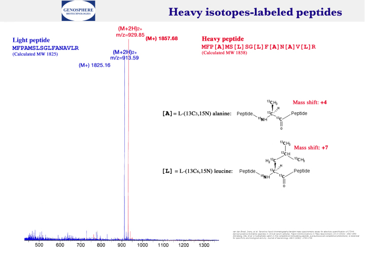 Peptide 3
