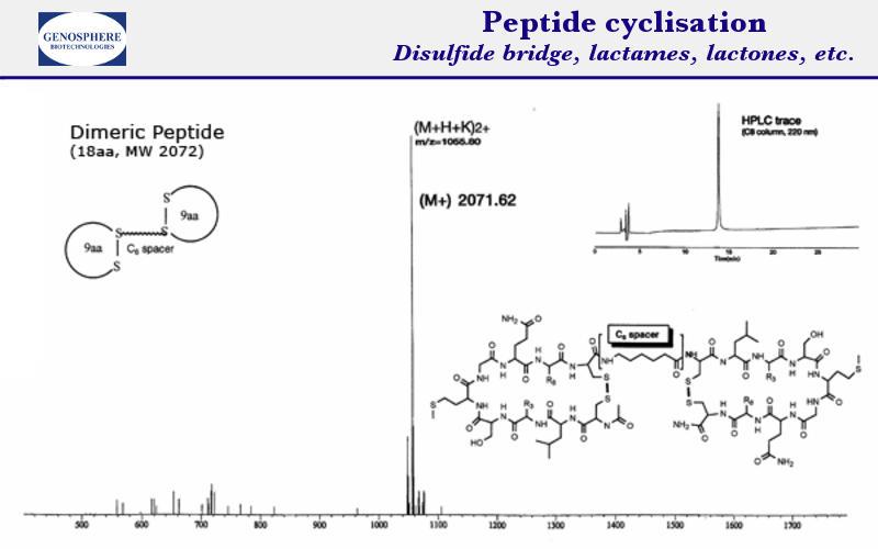 Peptide 6